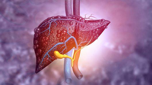 hepatitis-ficha_826207a4_1280x720