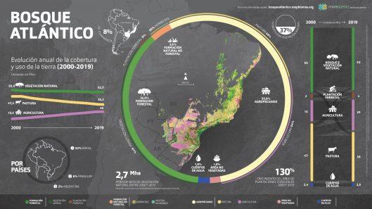 infografa_mapbiomas_bosque_atlntico